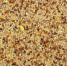 Wild Bird Food Seed Mix - 3 Pound Bag for Cardinals, Chickadees - Free Shipping!