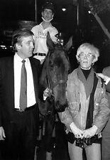 D Trump A Warhol Palm Beach Polo  Poster Print