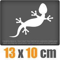 Gecko 13 x 10 cm JDM Decal Sticker Auto Car Weiß Scheibenaufkleber