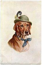 Joli chien humanisé avec chapeau et fumant la pipe . Dog smoking a pipe . Hat