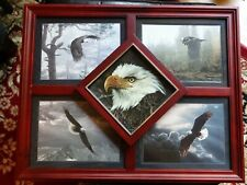 "Bradford Exchange ""Wings of Wonder"" A Masters Collection Framed Eagle Plates"