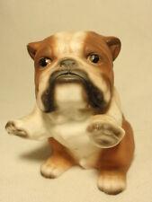 House of Global Art Harvey Knox Kingdom English Bulldog  Puppy Dog Figurine
