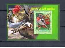 GRENADA  CARIACOU  BIRDS  2011 MNH