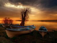 ART PRINT POSTER PHOTO SEASCAPE SUNSET DUSK BEACHED BOATS TREE LFMP0545