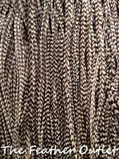 Lot 100 Grizzly Feathers Hair Extensions black and white real JUST BW GRIZ