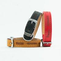 Dog Collars   Ancol Personalised Dog Puppy Collar   Heritage Leather Leads Leash