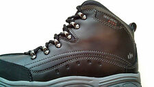 SKECHERS LADIES WORK SHOES SIZE 9.5 D'LITE PLUS ONLY $79.99 AND FREE SHIPPING