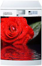 Adesivo lavastoviglie decocrazione cucina elettrodomestici Rosa ref 563 60x60cm