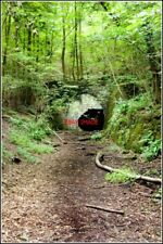 PHOTO  A HOLE IN THE WOODS THE NORTHERN PORTAL OF THE TUNNEL NEAR WELSH BICKNOR.