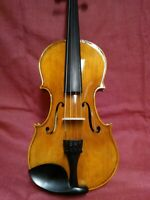 CVD19 Classic 4/4 Higher Entry outfit Student Violin Spruce & Maple beautiful!