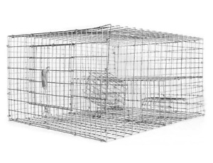 Sparrow Trap with Two Chambers (8 in. x 12 in. x 16 in.) - Bird B Gone