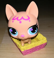 LPS Littlest Pet Shop Peach Chihuahua DOG Puppy & Basket Toy Figure  5.5cm