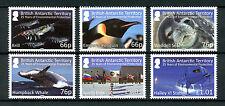 bat fr 2016 antarctique antarctic phoque baleine krill pingouin oiseaux drapeau