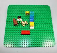 LEGO Duplo große grüne Grundplatte 38 x 38 mit Zubehör Steine Tiere Figur Ärztin