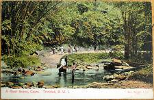 1910 Trinidad Postcard: A River Scene - Trinidad & Tobago, BWI