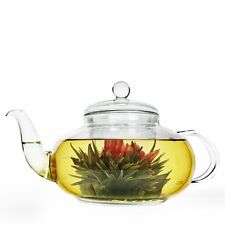 Heat Resistan Glass Teapot With Infuser Coffee Tea Leaf Herbal Pot 250ml DU