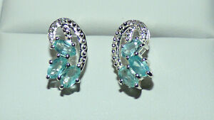 Blue Apatite Earrings BN