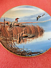 "Bs8 Danbury ""Follow The Leader"" Ducks Taking Flight 8"" Plate David Maass 1988"