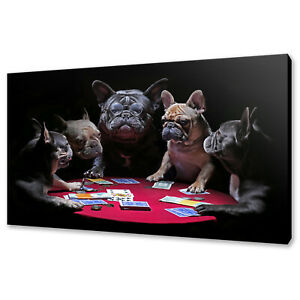 FRENCH BULLDOGS PLAYING CARDS POKER FUNKY ANIMALS CANVAS PRINT WALL ART PICTURE