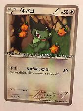 Pokemon Card / Carte Axew Promo 006/BW-P