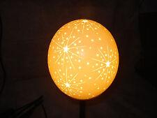 Straußeneilampe komplett Sternenexplosion Straussenei Strauss 23cm Sternschnuppe