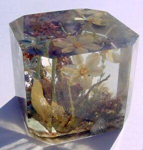 Vtg William Rolfe Octagonal Lucite Terrarium Paperweight w Flowers, Pink Rock GC