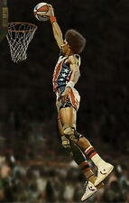 "021 Julius Erving - Dr. J NBA Basketball MVP Stars 24""x38"" Poster"