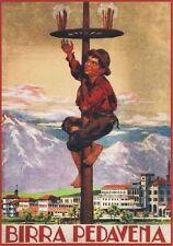 """Vintage Werbeschild """"1938 PEDAVENA BIER"""" WERBUNG, ADVERTISING, POSTER, REKLAME"""