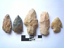 Native American des pointes x 5, véritable archaïque Artifacts, 1000BC-8000BC (962)
