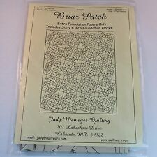 """Briar Patch Judy Niemeyer Quilting 60 6"""" Foundation Block Papers Only Quilt"""