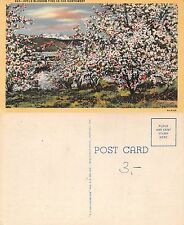 USA Oregon - Apple Blossom Time in the Northwest (A-L 256)
