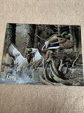 Ducks Unlimited #1204 Beaver Pond 1999 Mallard Tin Metal Sign Usa