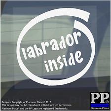 1 x Labrador all'interno-Finestra, Auto, Furgone, STICKER, SEGNO, veicolo, Adesivo, Cane, Pet, Board