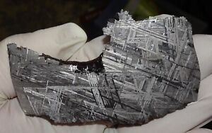 AMAZING 150 GM. MUONIONALUSTA ETCHED METEORITE END CUT