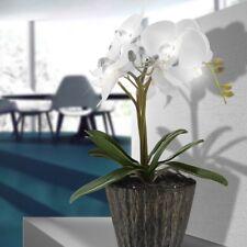 Orchidée pot à fleurs DEL éclairage fleurs feuilles salle de séjour luminaire