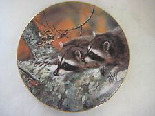 """""""FASCINATION"""" PLATE BY CARL BRENDERS FIRST ISSUE OUR WOODLAND FRIEND 1989 BRADEX"""