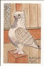 More details for satinnote frill racing or fancy pigeon antique hand-painted postcard