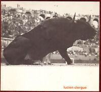1963 Lucien Clergue Signed Inscribed Magnan Photos Zürich French Barbezat