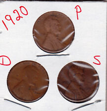 1920  P, D, and S  Lincoln cent in GOOD OR BETTER condition (3 coins )