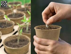 Grow It Biodegradable FIBRE POT 6cm Round Plant Seed Seedling Pots 96-Pack
