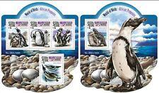 sierra leone 2015 birds penguins klb+s/s MNH