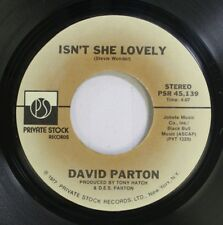 Pop 45 David Parton - Isn'T She Lovely / Love And Peace Of Mind On Private Stock