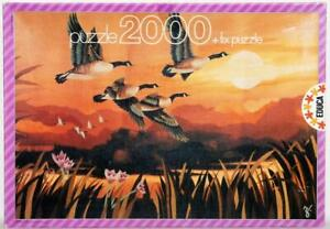 VINTAGE 2000 PIECE JIGSAW PUZZLE MIGRATORY FLIGHT MADE IN SPAIN EDUCA COMPLETE