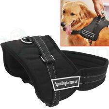 Pettorina sportiva M imbracatura SPORT DOG passeggio cane maniglia guinzaglio