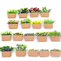 1/12 Dollhouse Miniature Mini Potted Plant Garden Decor Accessoriefw