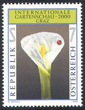 Austria 2000 Arum Lily/Flowers/Plants/Insects/Ladybird/Nature/Garden 1v (n29855)