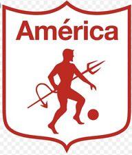 America De Cali Decal/calcomania