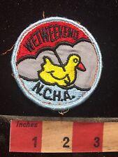 Vtg NCHA WET WEEKEND UMBRELLA Patch - Rubber Ducky - Duck 77YI