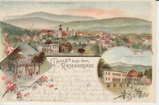 Ansichtskarte Schlesien  Gruß aus dem Riesengebirge  -  Warmbrunn  1901