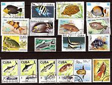 Les POISSONS-FISH  de mer de  tous pays  Les richesses halieutiques  28M258A